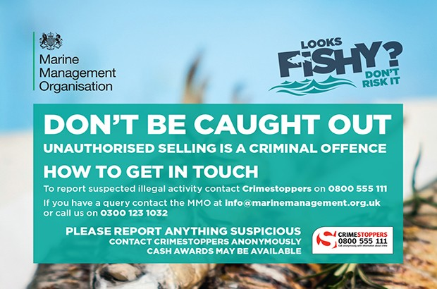 mmo illegal fish campaign