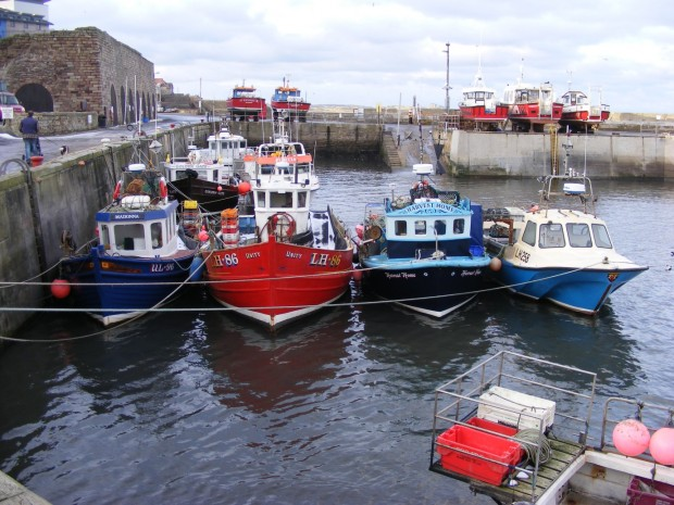 A line of boats in a harbour