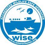 wise scheme logo