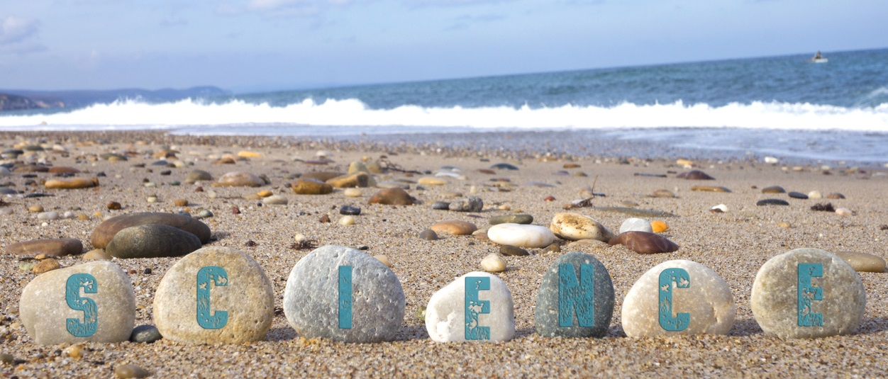 Science Concept with Balanced Stones on beach