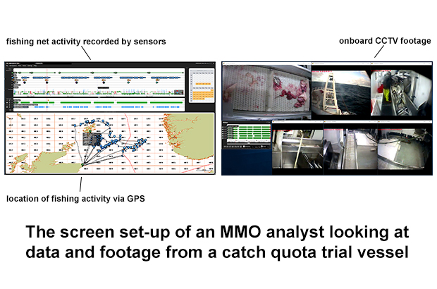 catch quota trial screens
