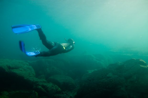 Snorkeling in murkey water