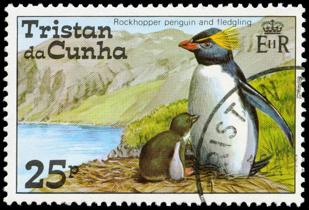 Rockhopper Penguins of Tristan da Cunha stamp