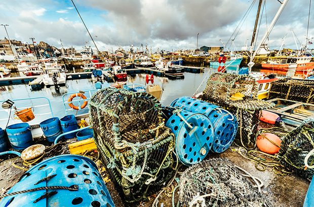 Fishing boats at Fraserburgh