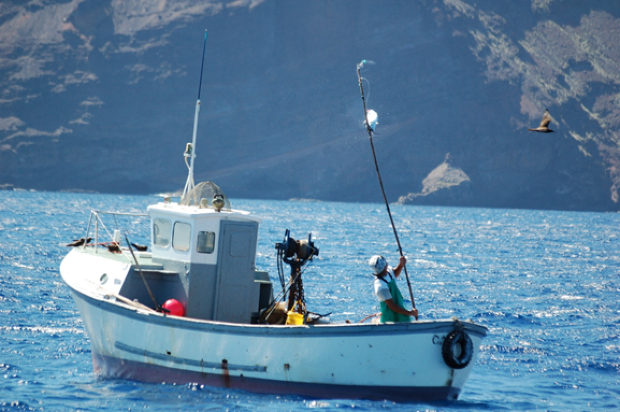 This photo was taken in St Helena showing a skipjack tuna being caught