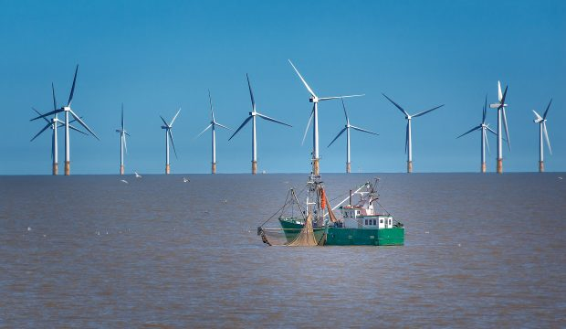 Offshore wind turbine and fishing boat