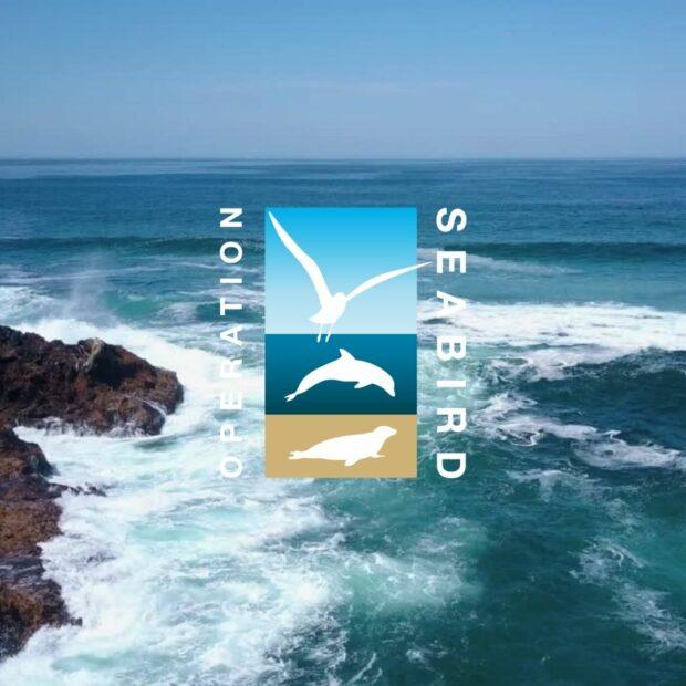 Operation Seabird logo